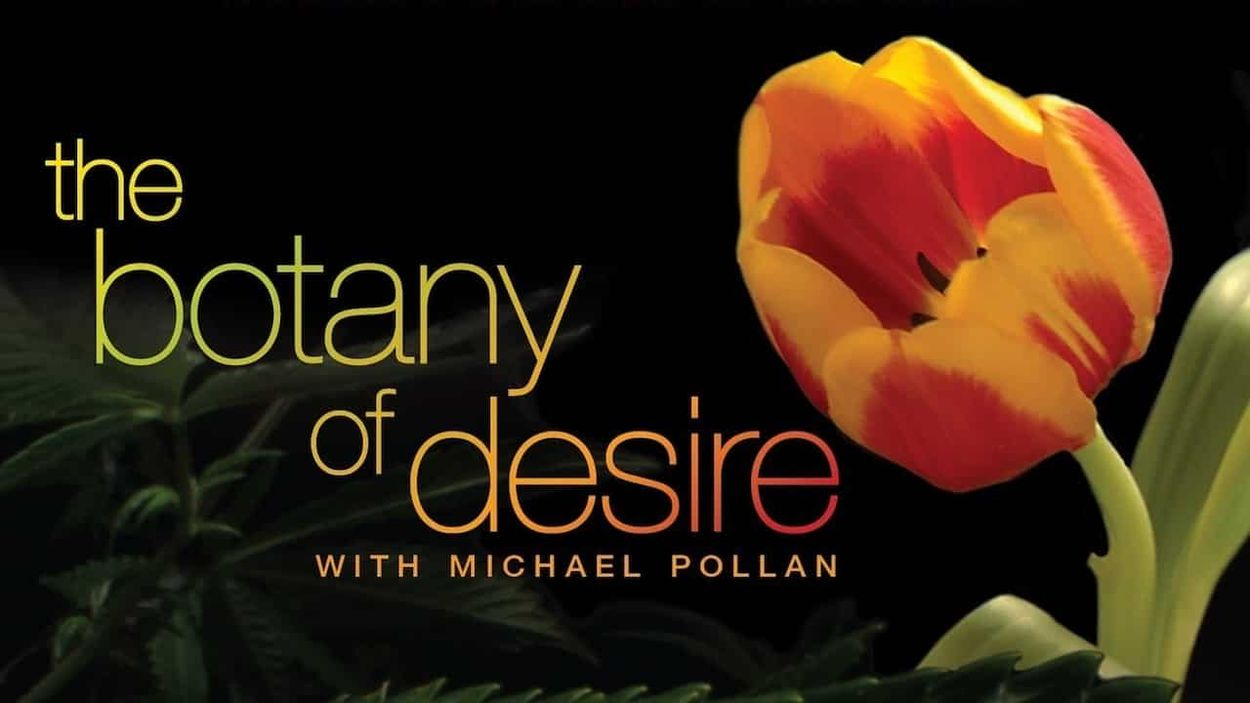 The Botany of Desire (2009)