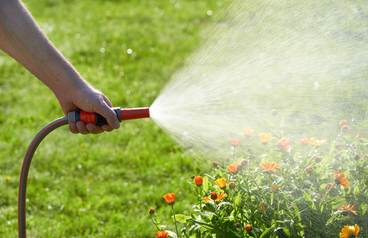 7) The irrigation hose