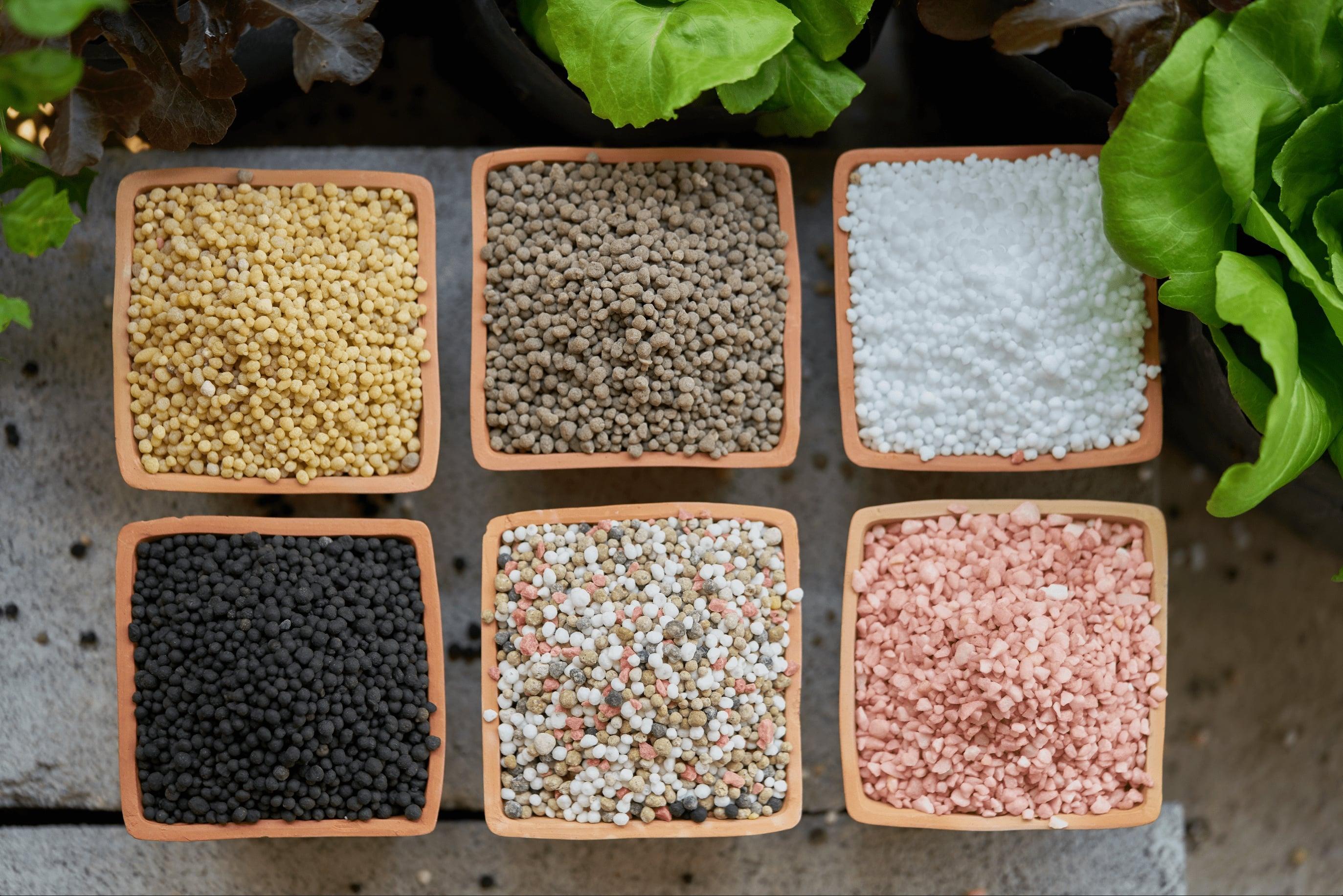 Common types of fertilizers
