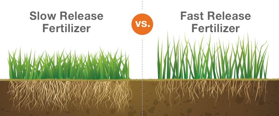 Slow-Release Fertilizers