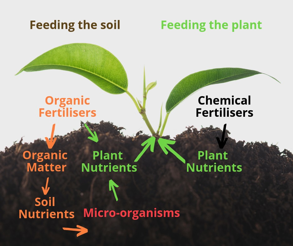Fertilizer types