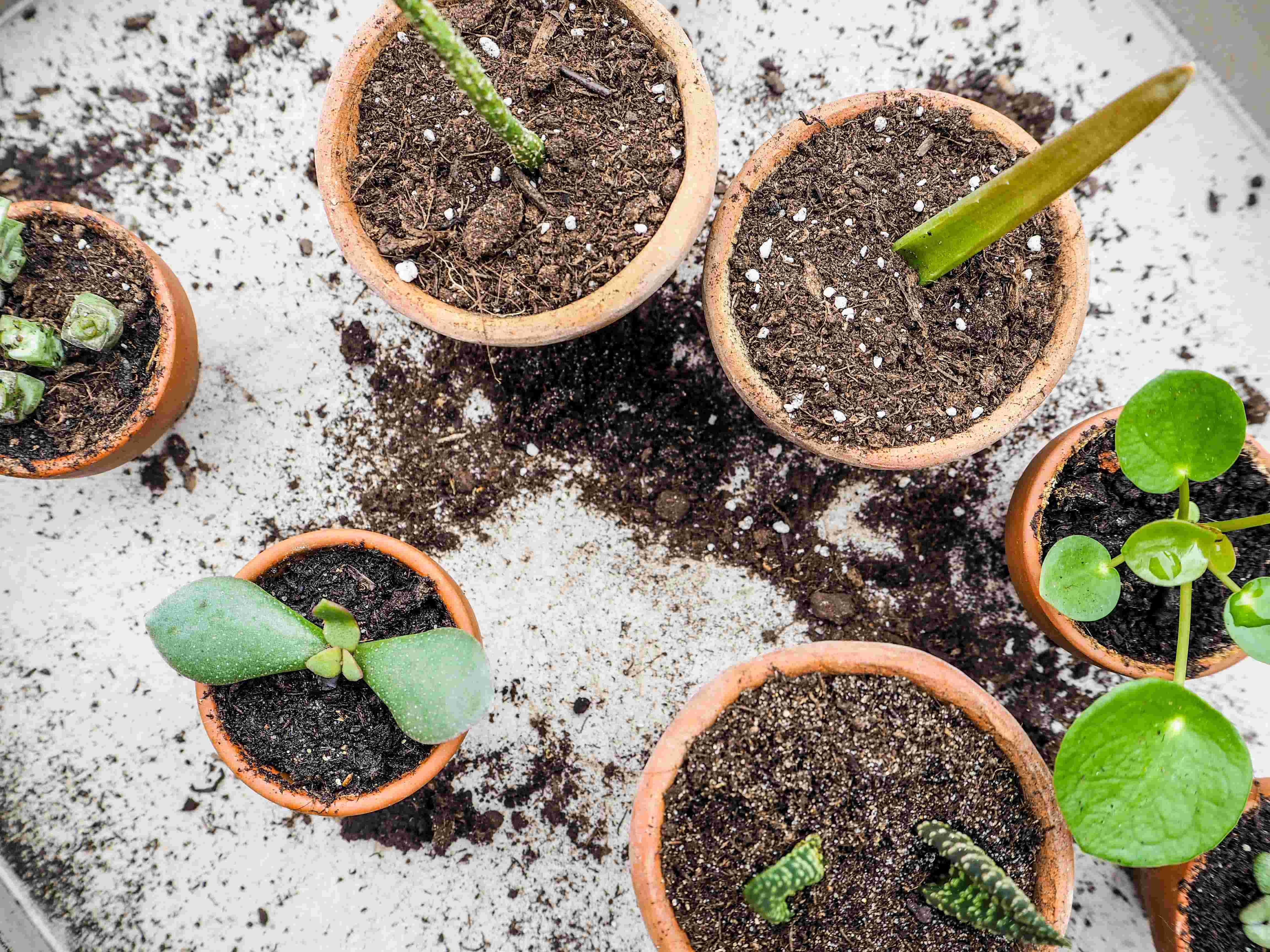 Soil method